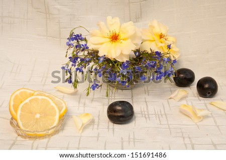 still life with lemon yellow roses and blue gypsophila and plum - stock photo