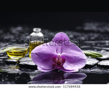 still life with macro of pink orchid and massage oil on pebble