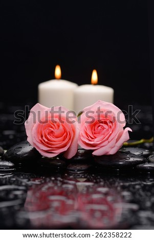 Still life with pink two rose and two candle on wet stones - stock photo