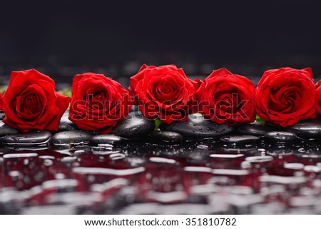 Still life with row of red rose and wet stones  - stock photo