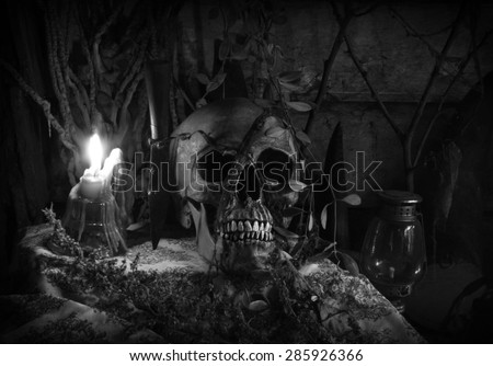 still life with skull human in haunted House.abandoned house.
