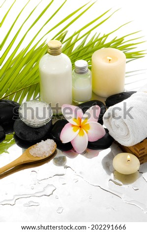 Still life with Spa set and green palm leaf - stock photo