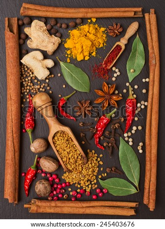 still life with spices and herbs in the frame of cinnamon sticks - stock photo