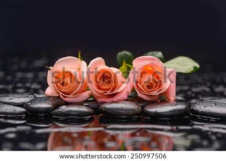 Still life with three orange rose and wet stones - stock photo