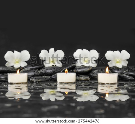 Still life with three orchid with white candle on black stones - stock photo