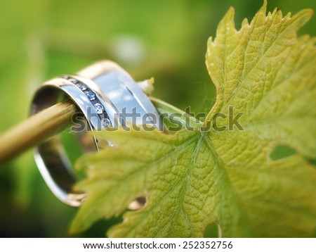 still life with wedding rings - stock photo