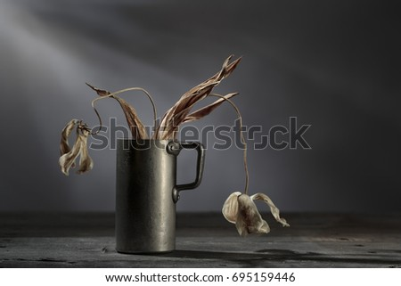 Still Life with withered and dried dead Flowers