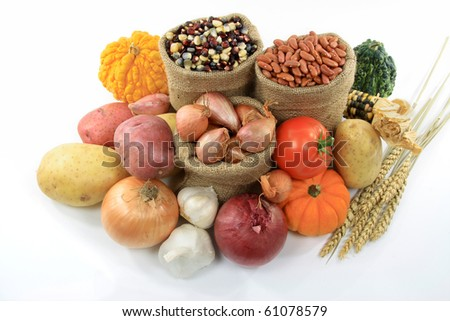Still Picture of pile from Fall vegetables and Gourds (squashes) over white background. - stock photo