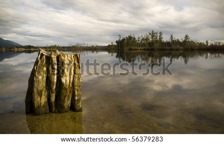Still reflective waters with old tree stump and forest island