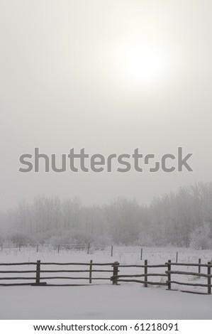 Still Winter morning - stock photo