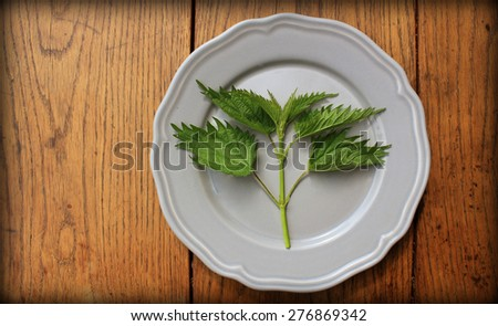 stinging nettle on a plate - stock photo