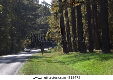 Stock image of Natchez Trace.  Native American paths that were later used by white settlers. - stock photo