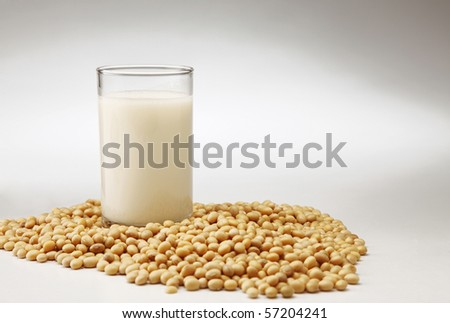 stock image of the glass of the soybean drink - stock photo