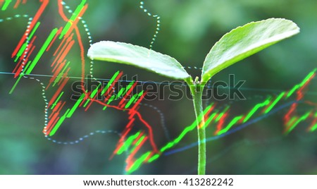 Stock market growth and success as a growing green tree in the shape of a stock investment graph - stock photo