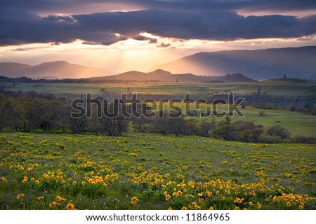 Stock photo of light rays streaming through clouds at sunset in the Rowena Nature Preserve - stock photo