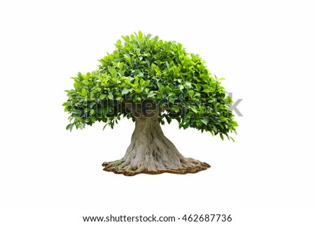 Stock Photo: