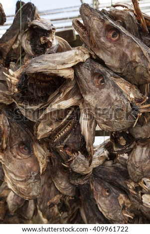 Stockfish heads (cod),close up to head with shallow depth of field.Norway.
