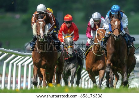 STOCKHOLM, SWEDEN - JUN 6, 2017: Row of horses with jockeys at the straight in fast pace at Nationaldagsgaloppen at Gardet.
