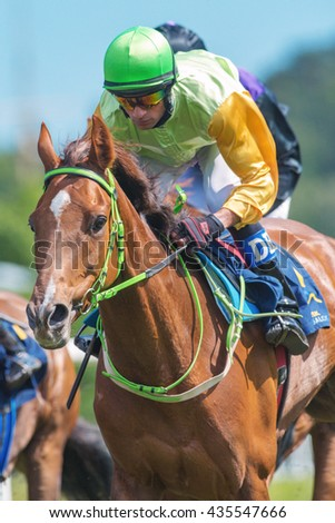 STOCKHOLM, SWEDEN - JUNE 6, 2016: Closeup of jockey and race horse at the Nationaldags Galoppen at Gardet with lush forest behind. - stock photo