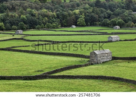 Stone barns and dry stone walls near Gunnerside, Swaledale - stock photo