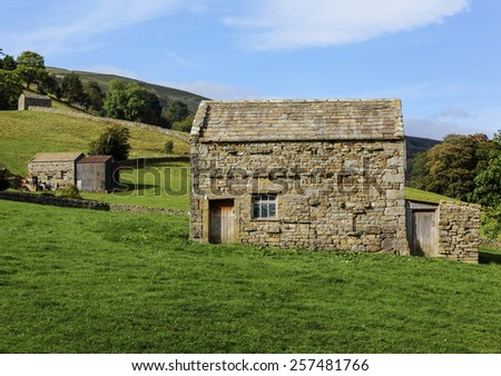 Stone barns and dry stone walls near Muker, Swaledale - stock photo