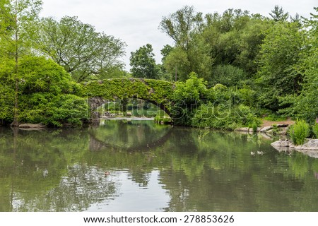 stone bridge in Central park, New York City in summer