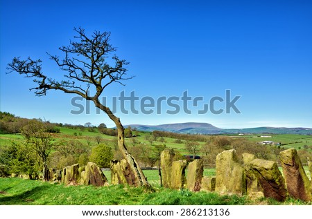 Stone built boundary fence near Pendle Hill - stock photo