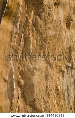 Stone, Couquina, Background, Texture - stock photo
