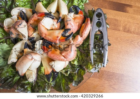 Stone Crab Claws on a Bed of Red Lettuce - stock photo