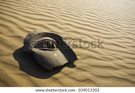 stone face on desert background