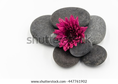 Stone,Flower isolated on white
