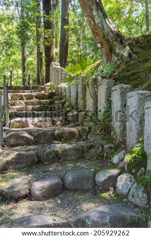 Stone Forest Staircase in Japanes Woods - stock photo