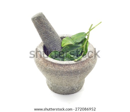 stone mortar and pestle with kaffir lime leaves  - stock photo