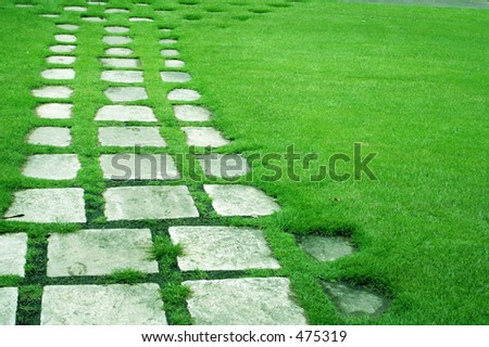 Stone Path in the Grass