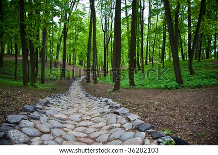Stone path in the Tsaritsyno park in Moscow, Russia - stock photo