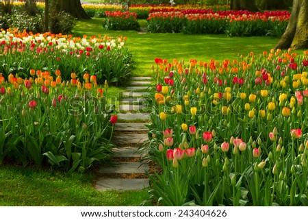 Stone path winding in fresh spring flower garden - stock photo