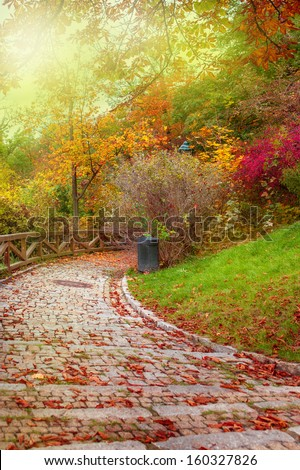 Stone path with autumnal leaves on it - stock photo