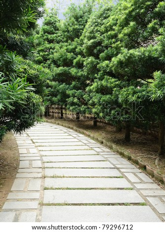 Stone pathway with pine tree in both side