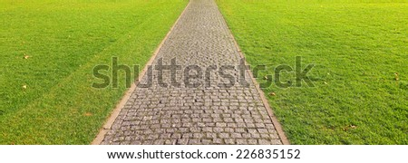 Stone road green grass and yellow leaves forward direction background - stock photo