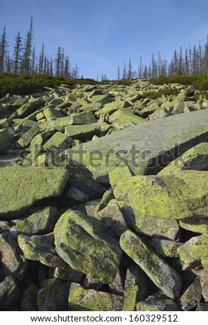 Stone sea Sumava, near Trojmezi / 3 border rock stone - stock photo