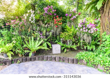 Stone seat stool among the beautiful orchid garden. - stock photo