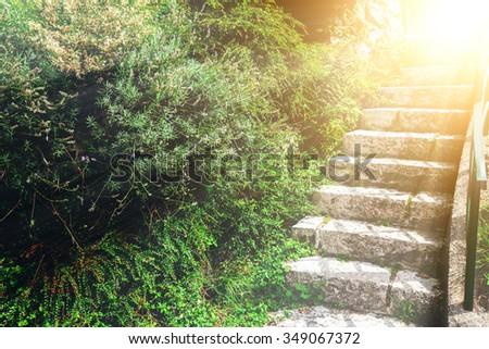 stone staircase in the green garden - stock photo