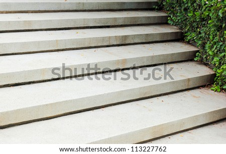 Stone stairway with green plant in the garden - stock photo