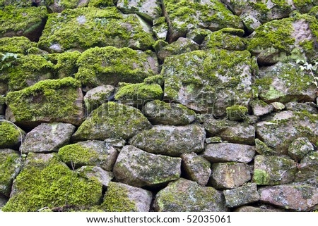 homemade stone wall ivy stone wall stock photo 643848439 shutterstock