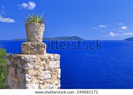 Stone wall decorated with Mediterranean vegetation near the Adriatic sea coast, Croatia - stock photo