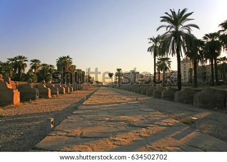 Stoned path leading to the temple of Luxor in the morning, Egypt