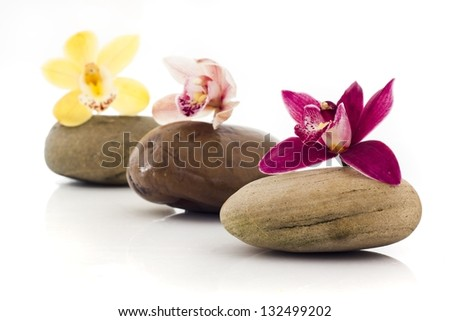 stones and orchids isolated on white - stock photo
