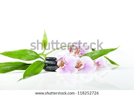 stones, bamboo and pink orchid on the white background - stock photo