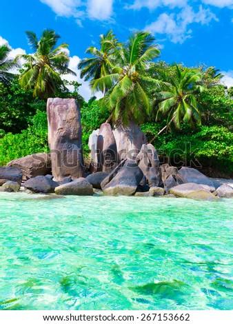 Stones Beach Shore  - stock photo