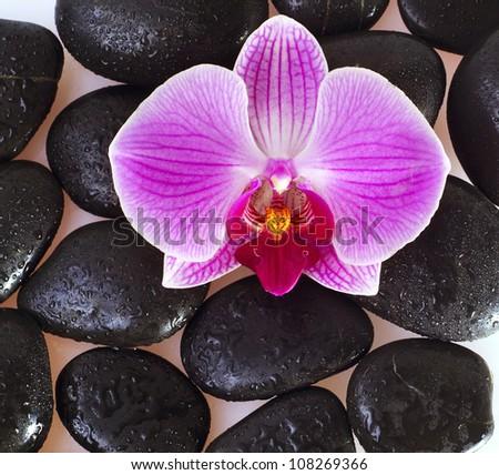 stones for spa - stock photo